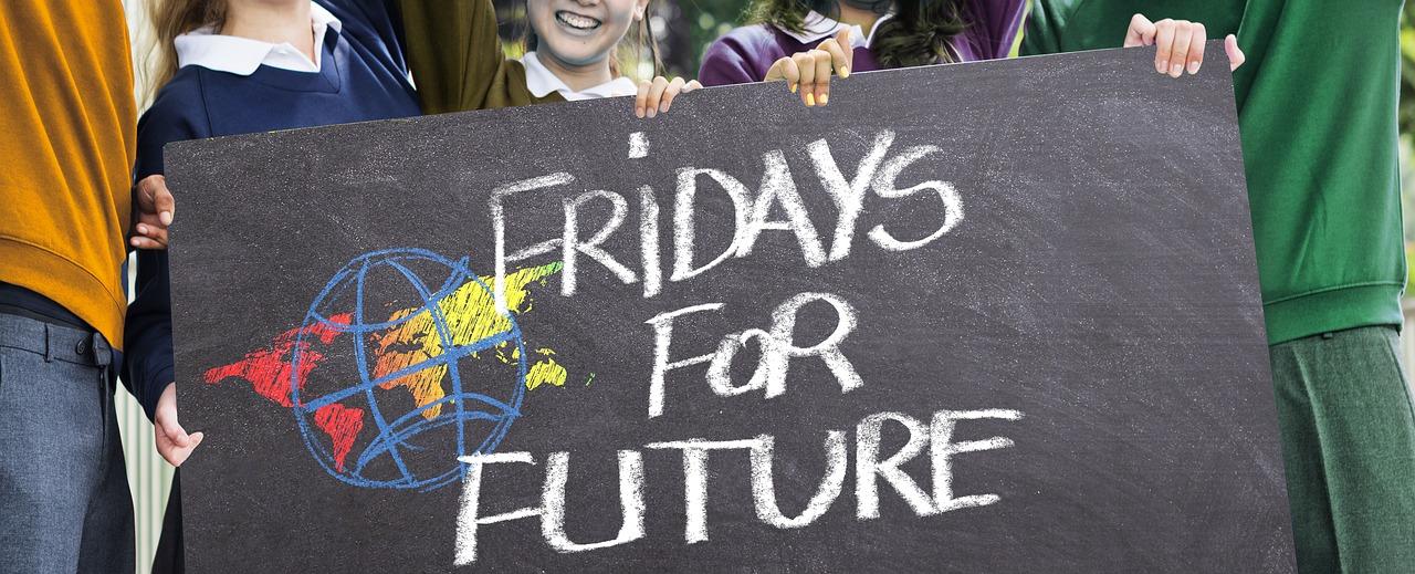Ein Beitrag zum FridayforFuture Tag und der Klimaschutzdiskussion